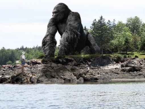 Photomontage King Kong